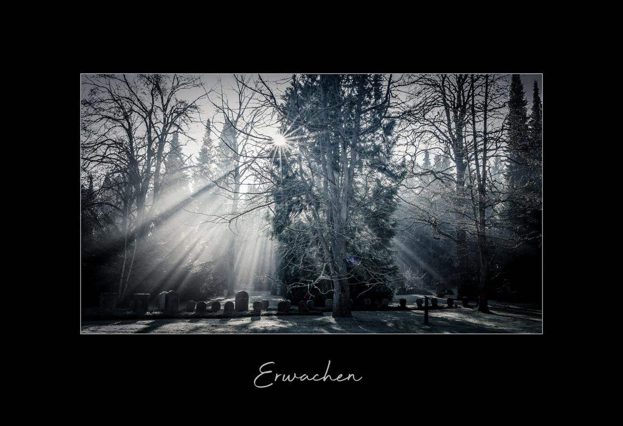 2019-12-erwachen-small