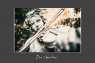2019-11-der-musikus