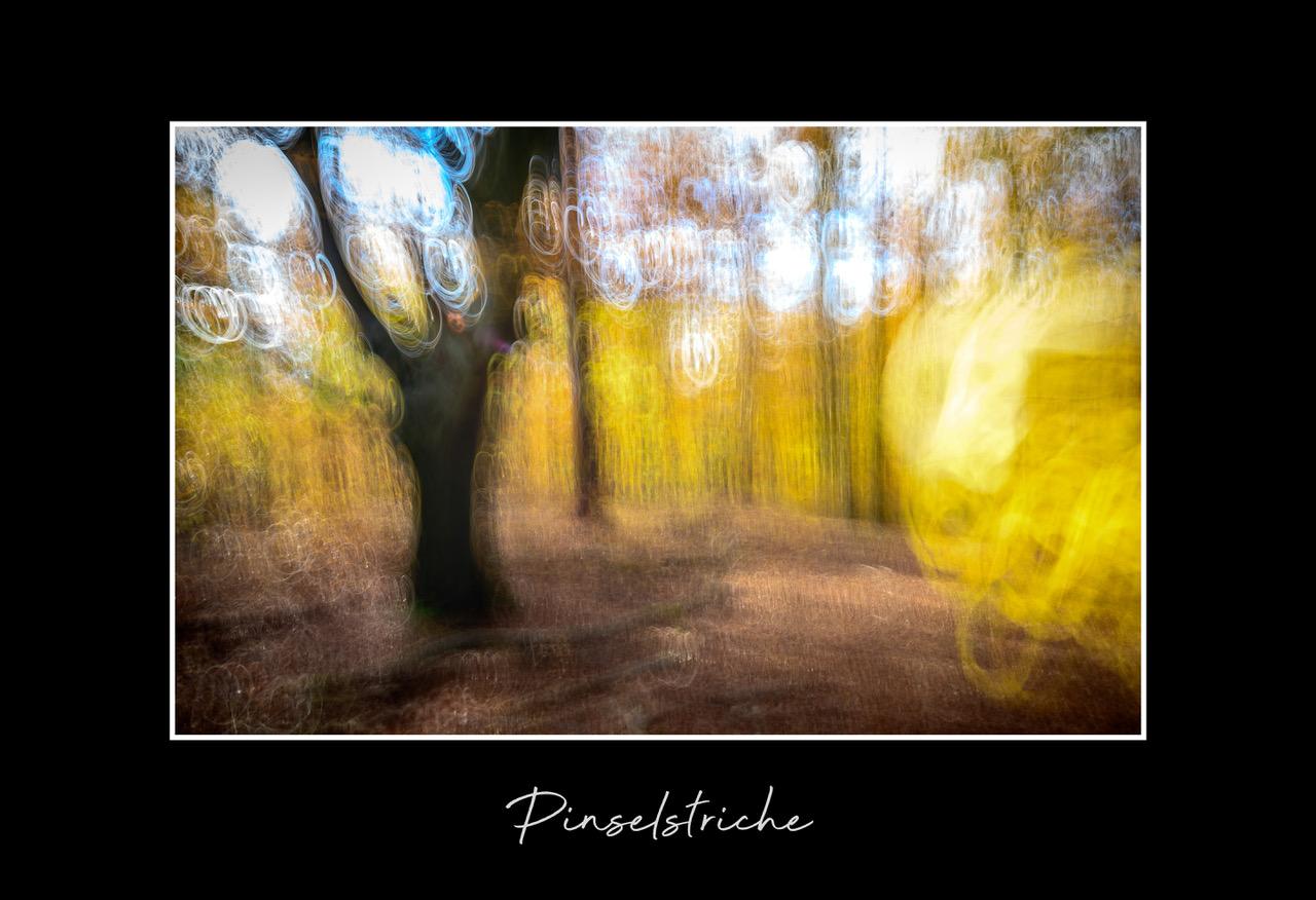 2019-11-pinselstriche